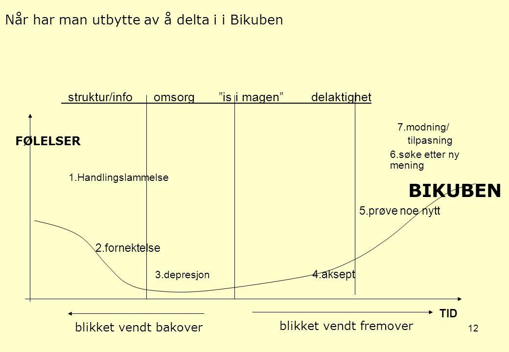 11 Bikuben også en base for egenvekst, nettverk og mestring •Personer fra nærområdet deltar frivillig som medarbeidere i Bikuben. Disse inngår i Bikub