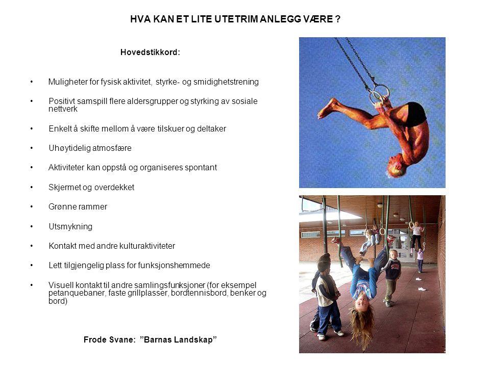 HVA KAN ET LITE UTETRIM ANLEGG VÆRE ? Hovedstikkord: •Muligheter for fysisk aktivitet, styrke- og smidighetstrening •Positivt samspill flere aldersgru