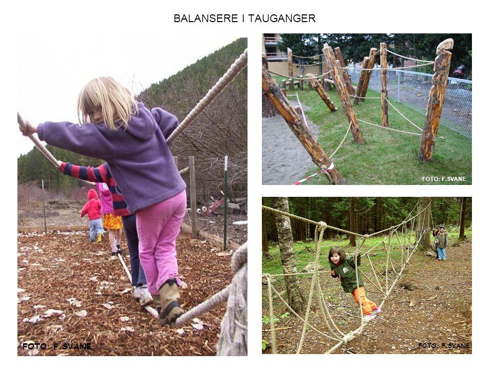 BALANSERE I TAUGANGER FOTO: F.SVANE