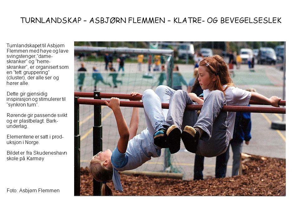 """TURNLANDSKAP – ASBJØRN FLEMMEN – KLATRE- OG BEVEGELSESLEK Turnlandskapet til Asbjørn Flemmen med høye og lave svingstenger,""""dame- skranker"""" og """"herre-"""