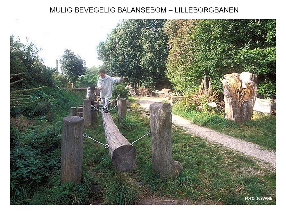 MULIG BEVEGELIG BALANSEBOM – LILLEBORGBANEN FOTO: F.SVANE