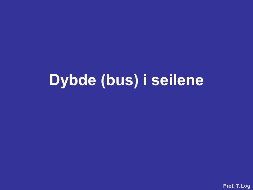 Dybde (bus) i seilene Prof. T. Log