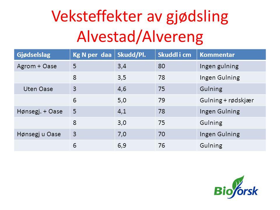 Veksteffekter av gjødsling Alvestad/Alvereng GjødselslagKg N per daaSkudd/Pl.Skuddl i cmKommentar Agrom + Oase53,480Ingen gulning 83,578Ingen Gulning