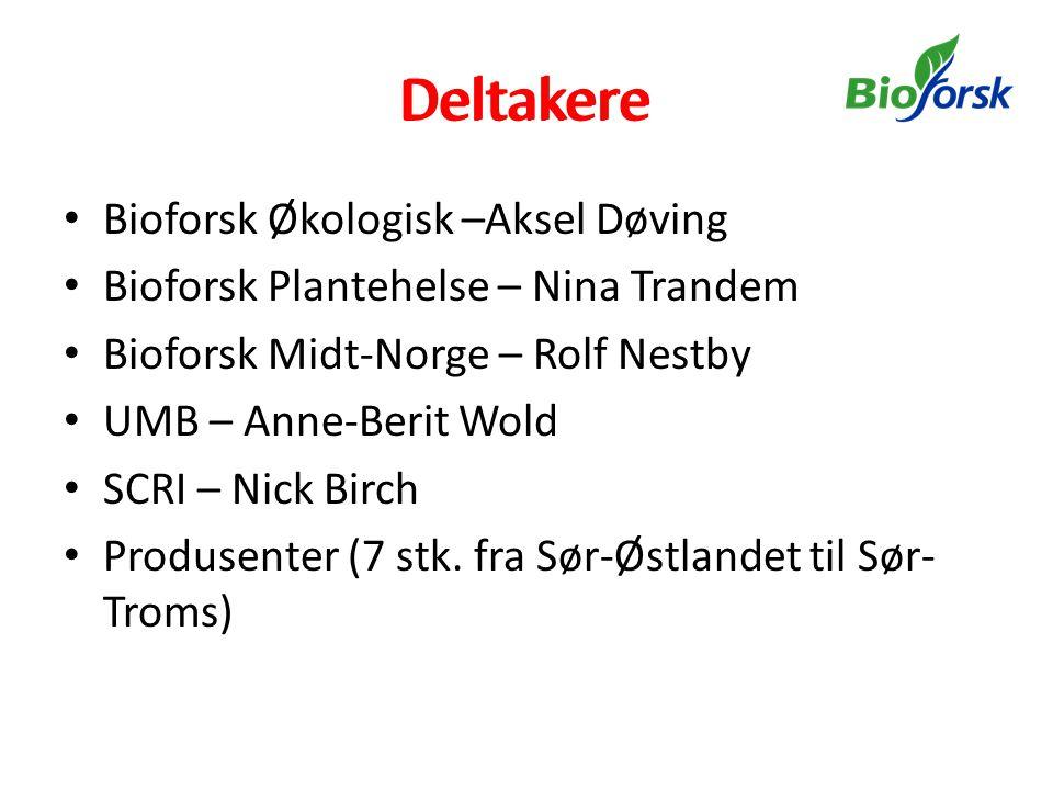 Deltakere • Bioforsk Økologisk –Aksel Døving • Bioforsk Plantehelse – Nina Trandem • Bioforsk Midt-Norge – Rolf Nestby • UMB – Anne-Berit Wold • SCRI