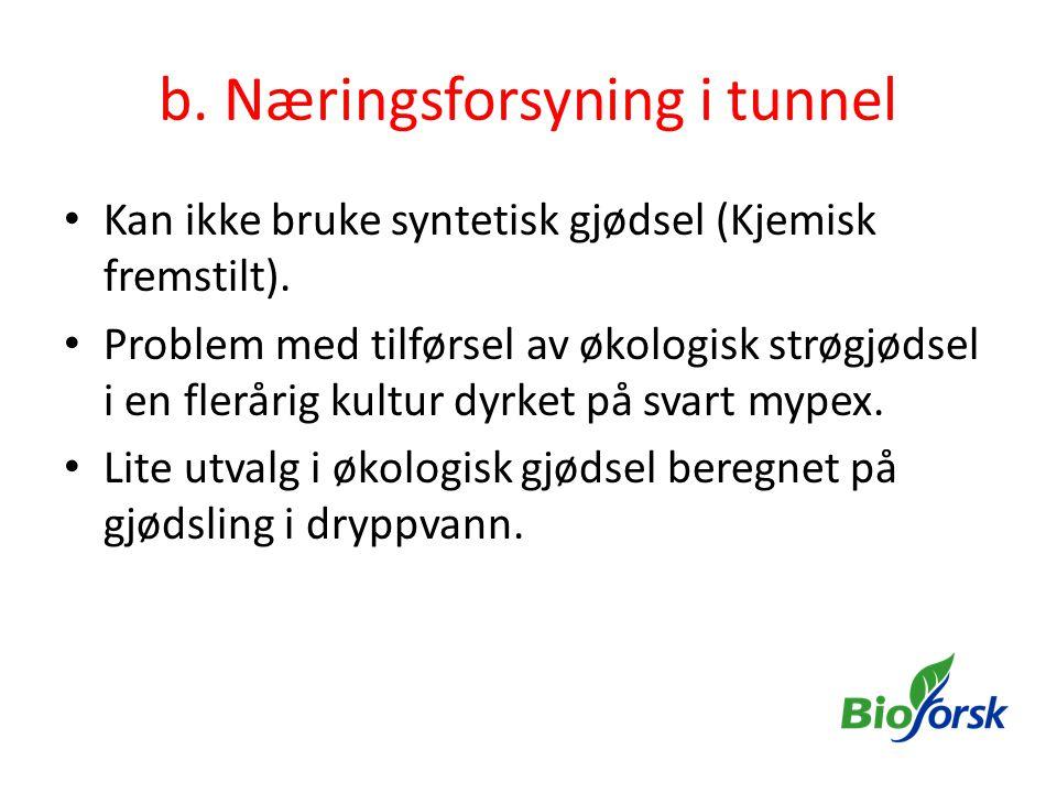 b. Næringsforsyning i tunnel • Kan ikke bruke syntetisk gjødsel (Kjemisk fremstilt). • Problem med tilførsel av økologisk strøgjødsel i en flerårig ku