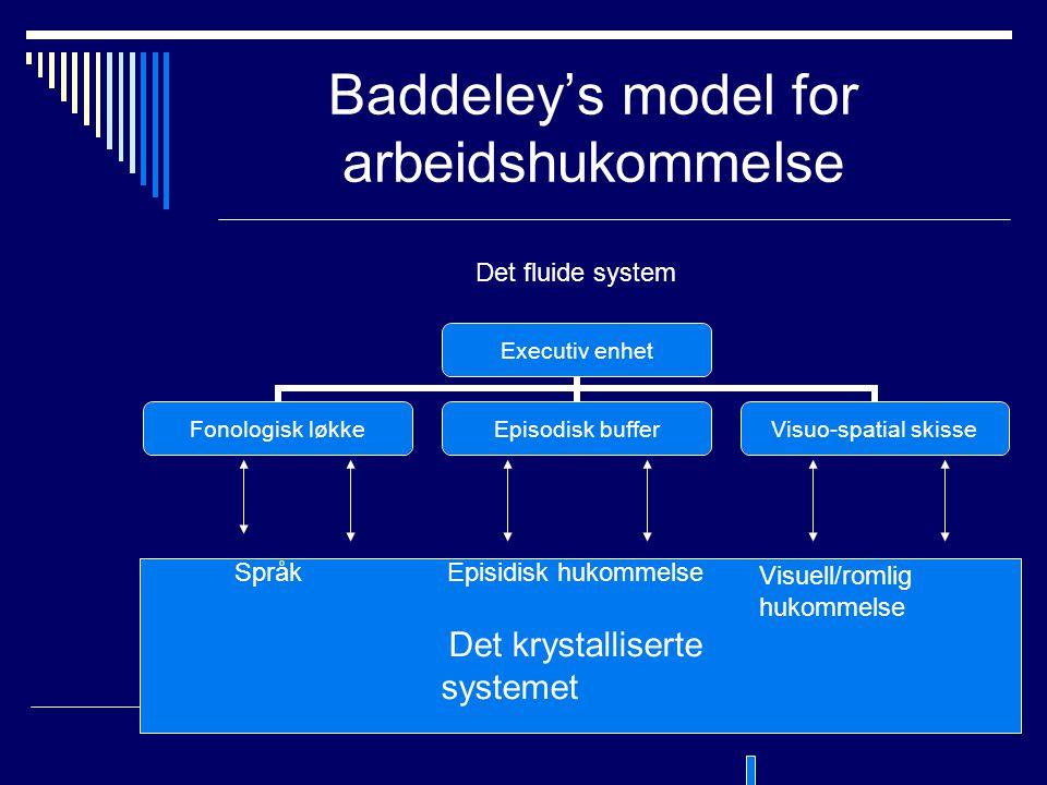 Baddeley's model for arbeidshukommelse Det fluide system SpråkEpisidisk hukommelse Det krystalliserte systemet Visuell/romlig hukommelse