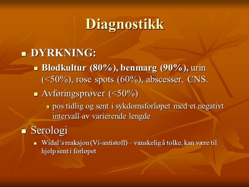 Diagnostikk  DYRKNING:  Blodkultur (80%), benmarg (90%), urin (<50%), rose spots (60%), abscesser, CNS.  Avføringsprøver (<50%)  pos tidlig og sen
