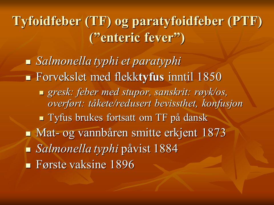 """Tyfoidfeber (TF) og paratyfoidfeber (PTF) (""""enteric fever"""")  Salmonella typhi et paratyphi  Forvekslet med flekktyfus inntil 1850  gresk: feber med"""