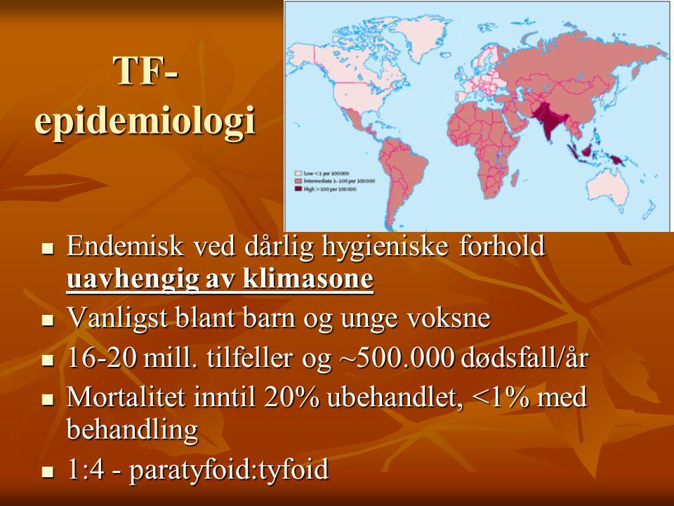 Tyfoidfeber i Norge  Importsykdom  TF: 11-23 tilfeller/år '00-'05  PTF: 11-24 tilfeller/år '00-'05  Indiske subkontinent  TF:PTF – 1:1  Spredning fra kroniske bærere innen familier  Etterkontroll, jf MSIS 1999/52A Tyfoidfeber i Norge 1929-2004