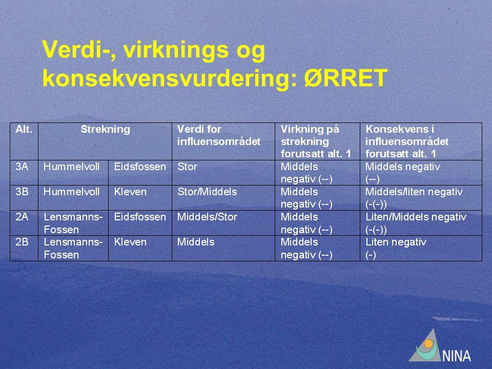 Verdi-, virknings og konsekvensvurdering: ØRRET