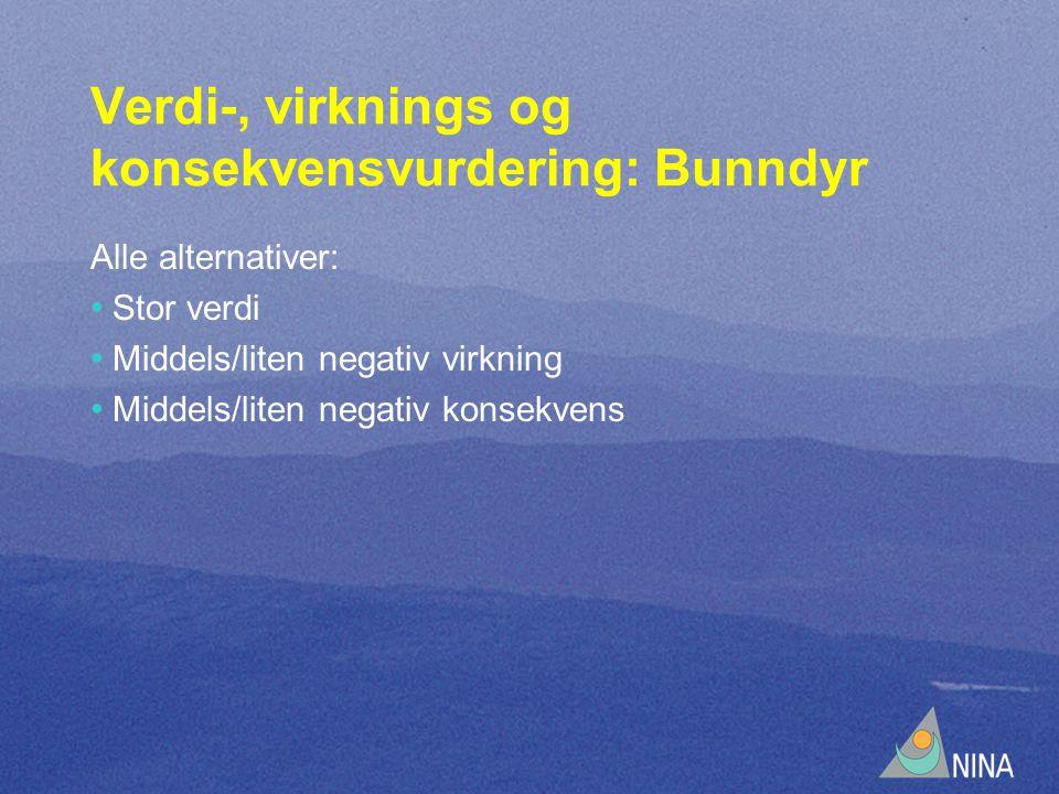 Verdi-, virknings og konsekvensvurdering: Bunndyr Alle alternativer: • Stor verdi • Middels/liten negativ virkning • Middels/liten negativ konsekvens