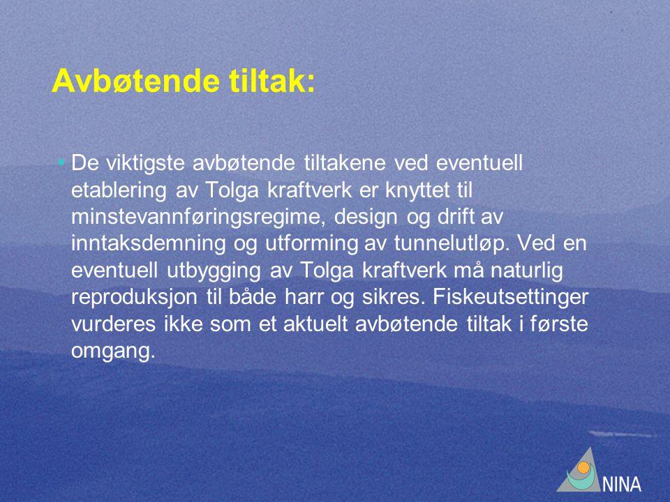 Avbøtende tiltak: • De viktigste avbøtende tiltakene ved eventuell etablering av Tolga kraftverk er knyttet til minstevannføringsregime, design og drift av inntaksdemning og utforming av tunnelutløp.