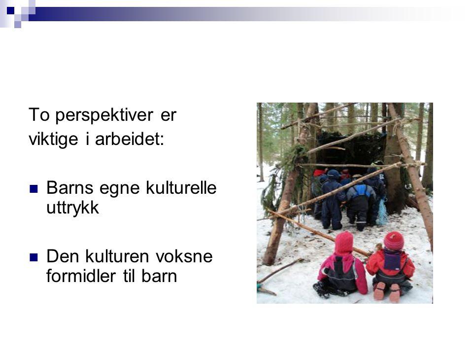 To perspektiver er viktige i arbeidet:  Barns egne kulturelle uttrykk  Den kulturen voksne formidler til barn