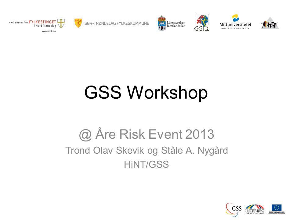 GSS Workshop @ Åre Risk Event 2013 Trond Olav Skevik og Ståle A. Nygård HiNT/GSS