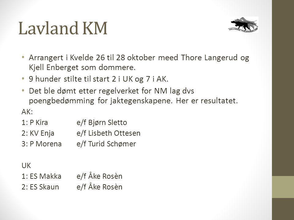 Lavland KM • Arrangert i Kvelde 26 til 28 oktober meed Thore Langerud og Kjell Enberget som dommere. • 9 hunder stilte til start 2 i UK og 7 i AK. • D