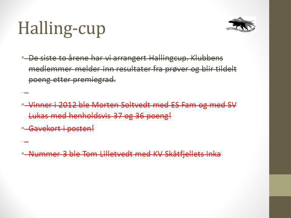 Halling-cup • De siste to årene har vi arrangert Hallingcup. Klubbens medlemmer melder inn resultater fra prøver og blir tildelt poeng etter premiegra