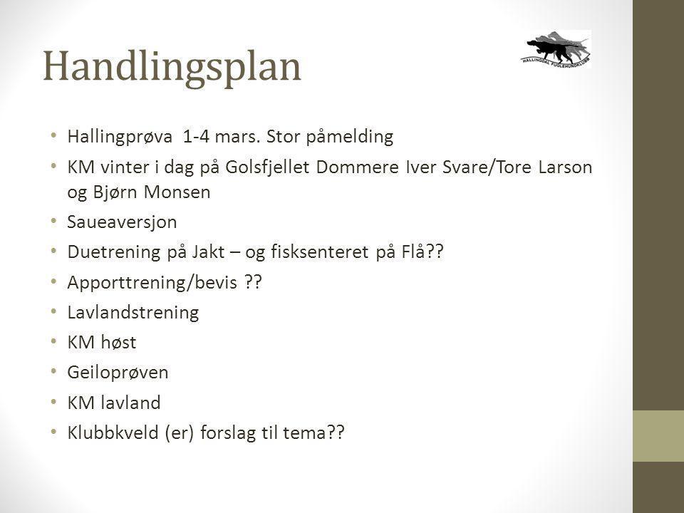 Handlingsplan • Hallingprøva 1-4 mars. Stor påmelding • KM vinter i dag på Golsfjellet Dommere Iver Svare/Tore Larson og Bjørn Monsen • Saueaversjon •