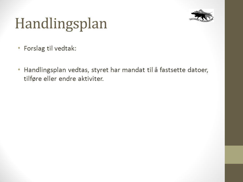Handlingsplan • Forslag til vedtak: • Handlingsplan vedtas, styret har mandat til å fastsette datoer, tilføre eller endre aktiviter.