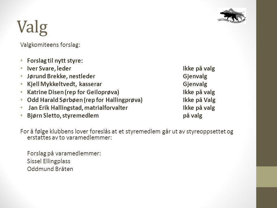 Valg Valgkomiteens forslag: • Forslag til nytt styre: • Iver Svare, leder Ikke på valg • Jørund Brekke, nestlederGjenvalg • Kjell Mykkeltvedt, kassera
