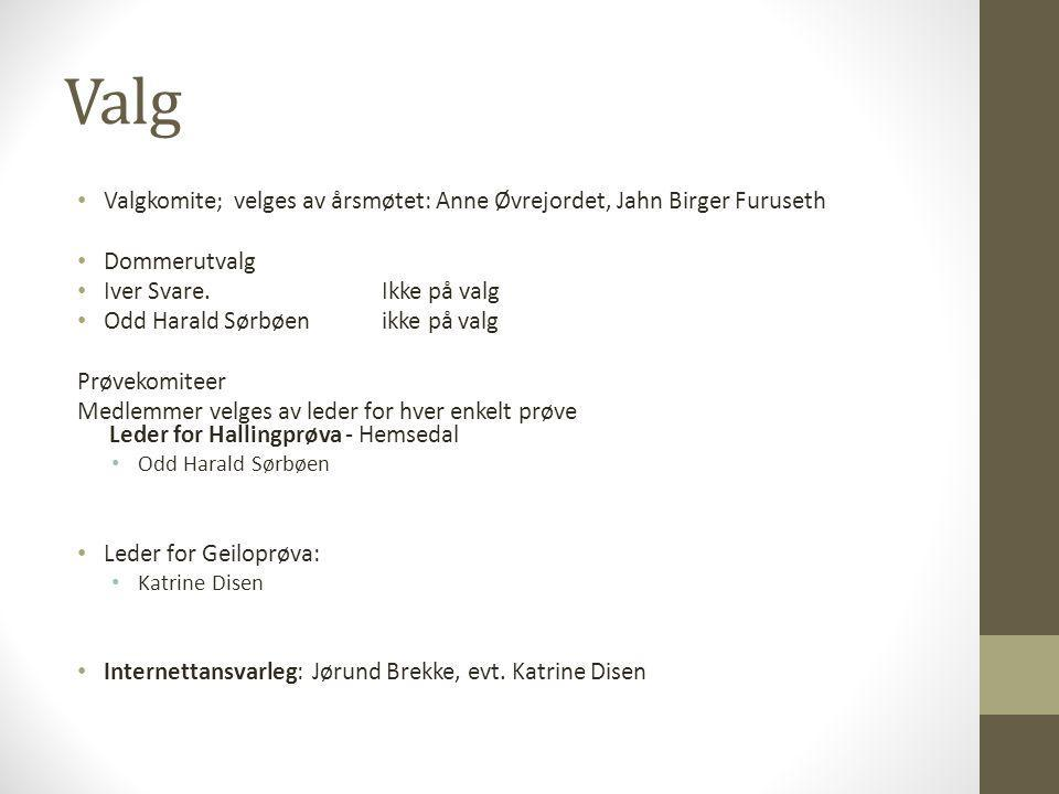 Valg • Valgkomite; velges av årsmøtet: Anne Øvrejordet, Jahn Birger Furuseth • Dommerutvalg • Iver Svare.Ikke på valg • Odd Harald Sørbøenikke på valg