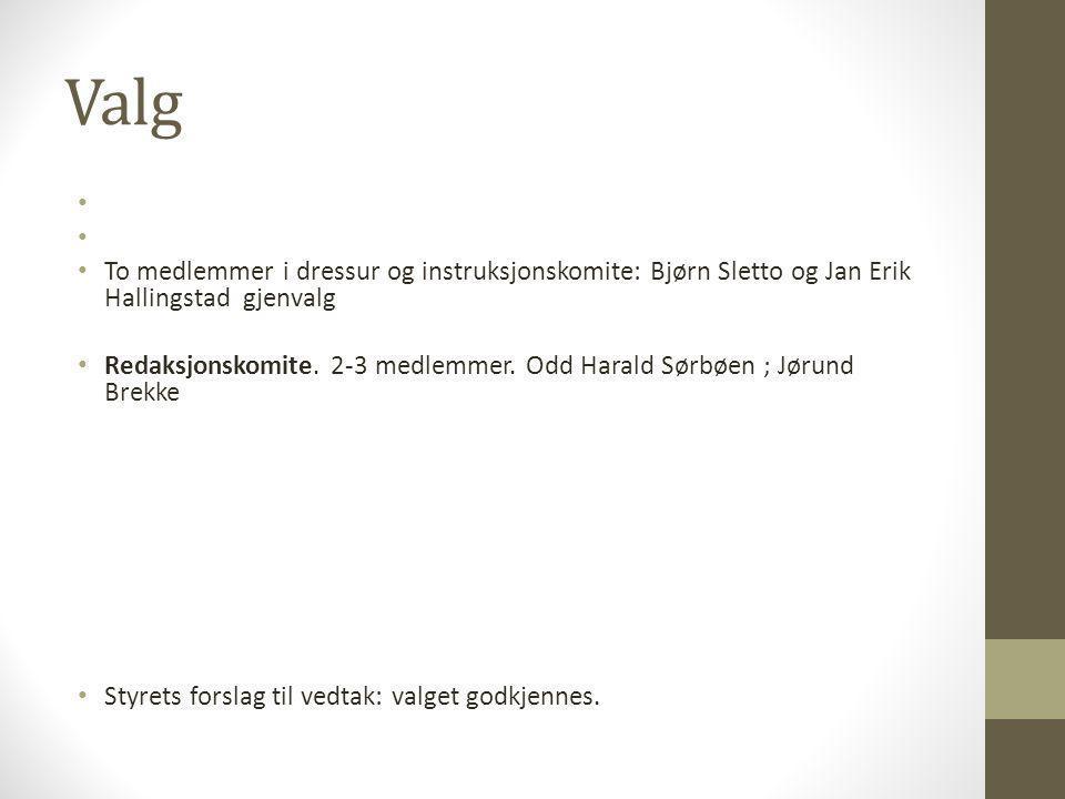 Valg • • To medlemmer i dressur og instruksjonskomite: Bjørn Sletto og Jan Erik Hallingstad gjenvalg • Redaksjonskomite. 2-3 medlemmer. Odd Harald Sør