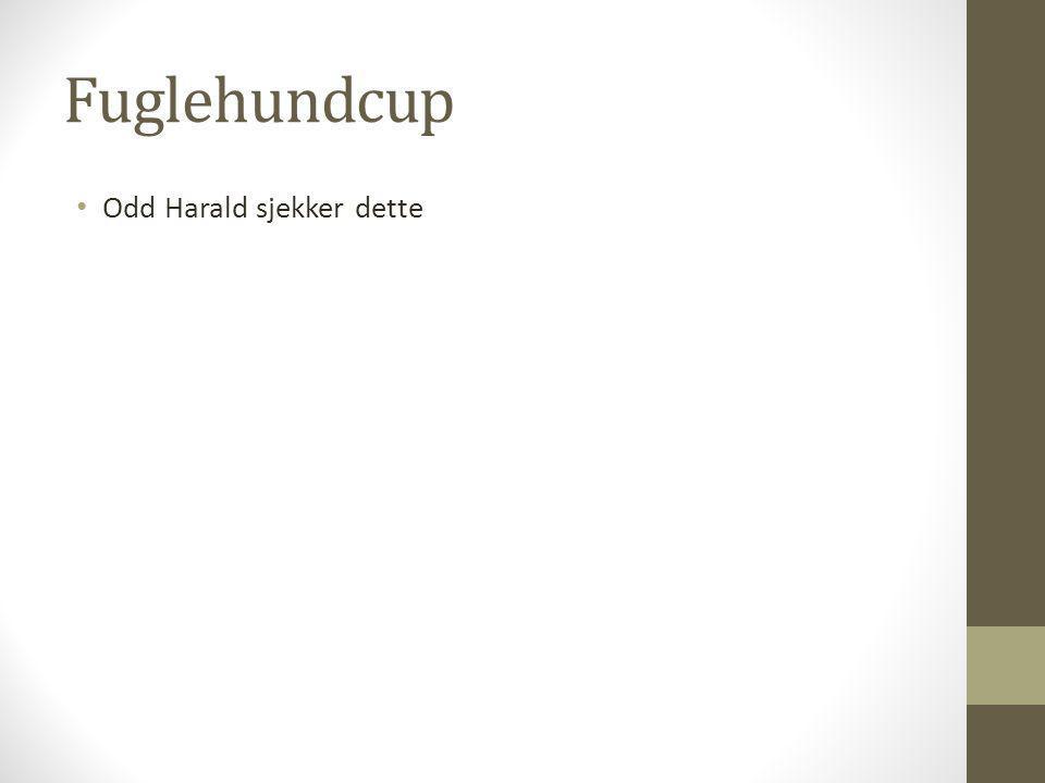 Fuglehundcup • Odd Harald sjekker dette