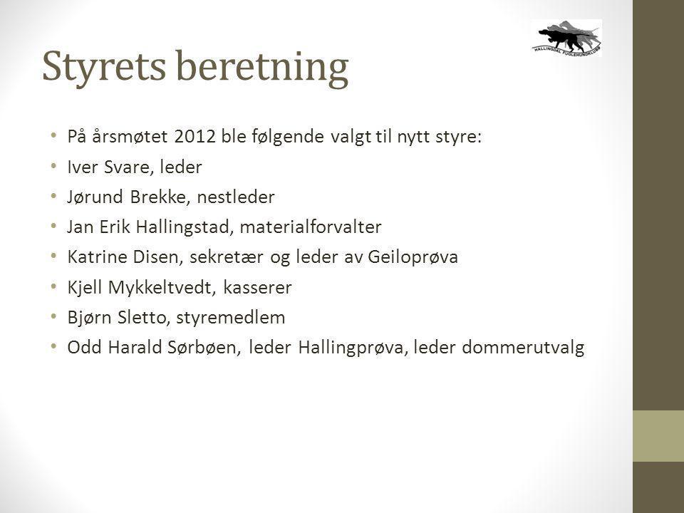 Styrets beretning • På årsmøtet 2012 ble følgende valgt til nytt styre: • Iver Svare, leder • Jørund Brekke, nestleder • Jan Erik Hallingstad, materia