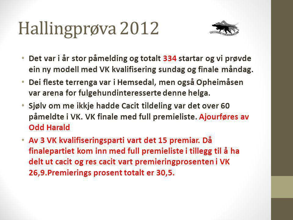 Hallingprøva 2012 • Det var i år stor påmelding og totalt 334 startar og vi prøvde ein ny modell med VK kvalifisering sundag og finale måndag. • Dei f
