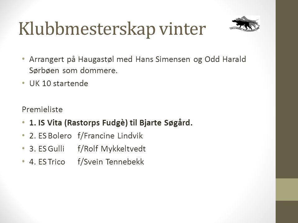 Klubbmesterskap vinter • Arrangert på Haugastøl med Hans Simensen og Odd Harald Sørbøen som dommere. • UK 10 startende Premieliste • 1. IS Vita (Rasto