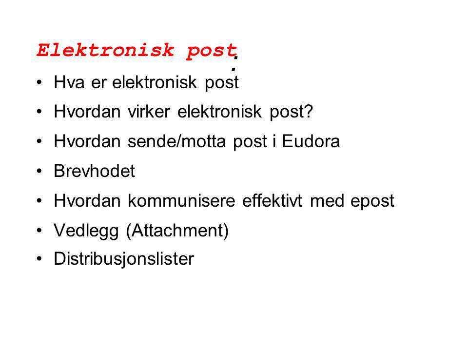 Hva er elektronisk post •En måte å kommunisere på via elektronisk nettverk •Nettverket må ha en posttjener - en maskin som hjelper til med å sende og motta brev •Posttjeneren har postkasser for plassering av post