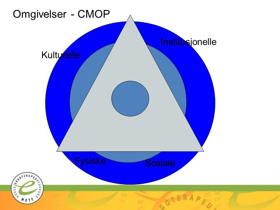 Kulturelle Institusjonelle Sosiale Fysiske Omgivelser - CMOP