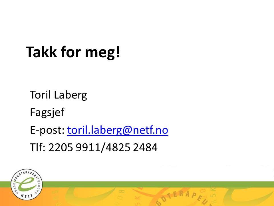 Takk for meg! Toril Laberg Fagsjef E-post: toril.laberg@netf.notoril.laberg@netf.no Tlf: 2205 9911/4825 2484