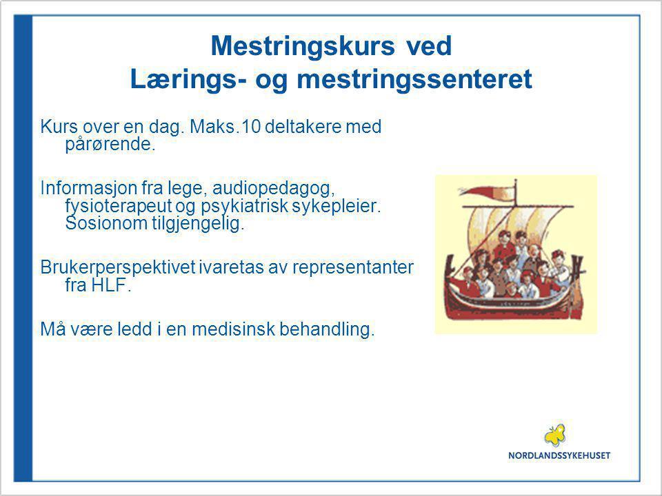 Mestringskurs ved Lærings- og mestringssenteret Kurs over en dag.