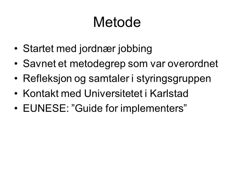Metode Startet med jordnær jobbing Savnet et metodegrep som var overordnet Refleksjon og samtaler i styringsgruppen Kontakt med Universitetet i Karlst