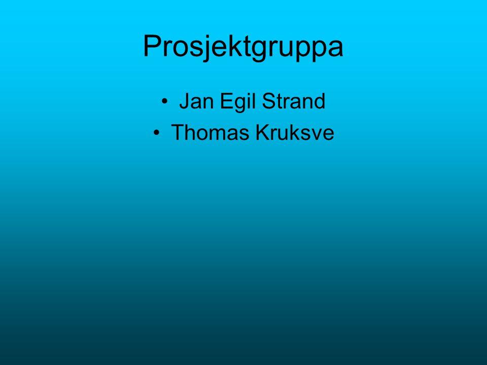Prosjektgruppa Jan Egil Strand Thomas Kruksve