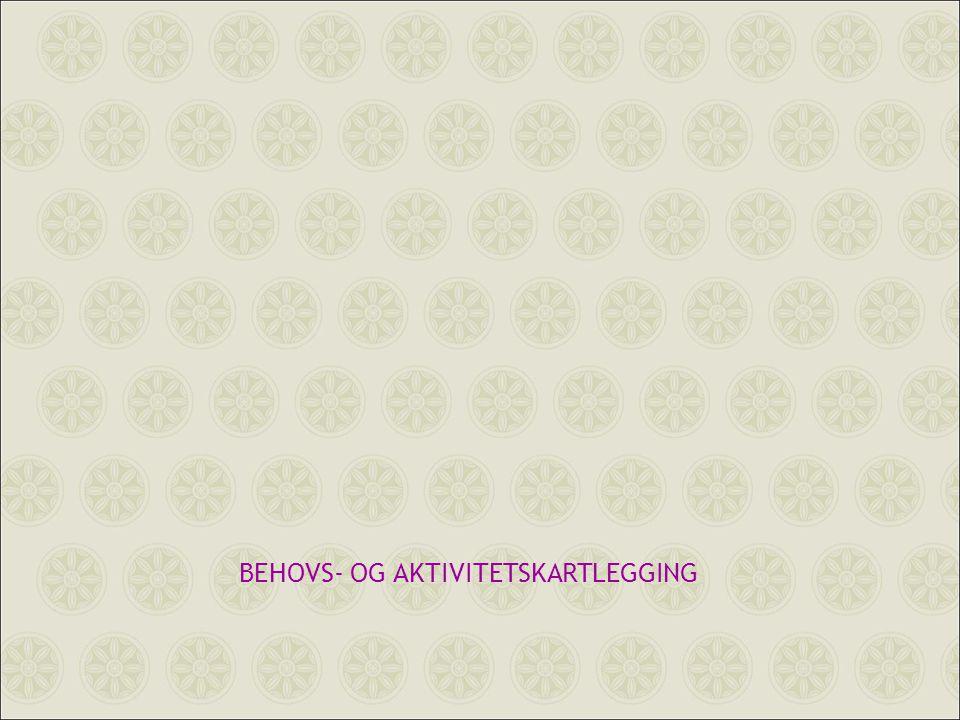 BEHOVS- OG AKTIVITETSKARTLEGGING