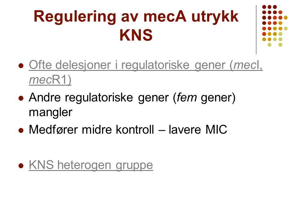 Regulering av mecA utrykk KNS Ofte delesjoner i regulatoriske gener (mecI, mecR1) Ofte delesjoner i regulatoriske gener (mecI, mecR1) Andre regulatori