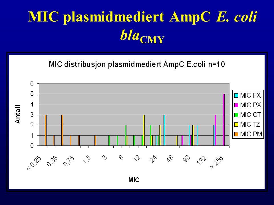 MIC plasmidmediert AmpC E. coli bla CMY
