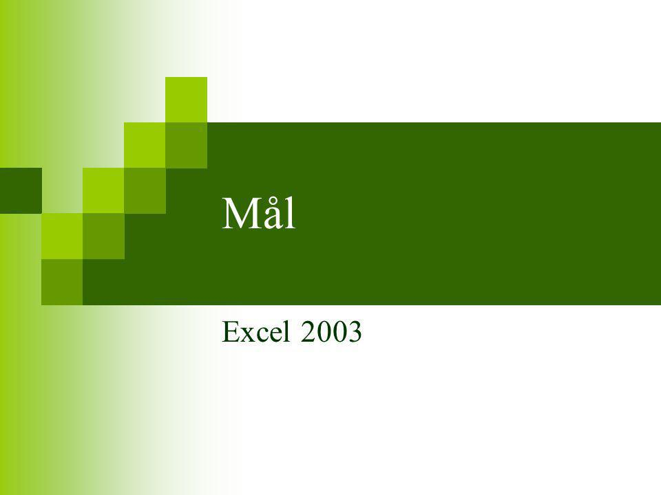 Mål Excel 2003