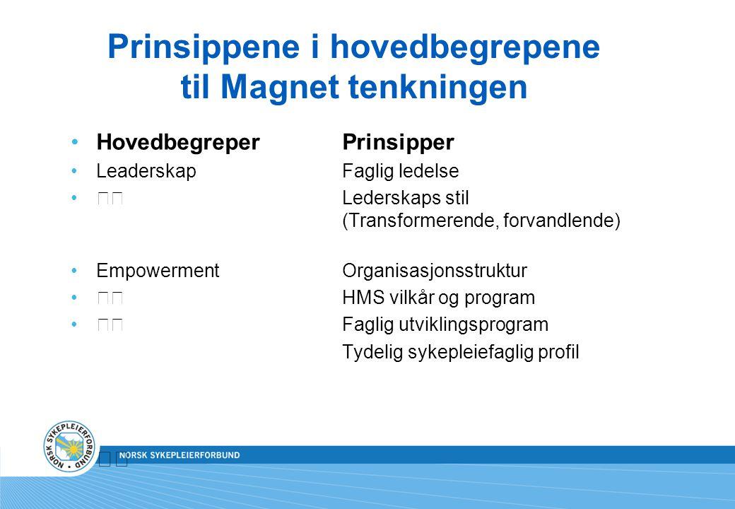 Prinsippene i hovedbegrepene til Magnet tenkningen Hovedbegreper Prinsipper LeaderskapFaglig ledelse Lederskaps stil (Transformerende, forvandlende) E