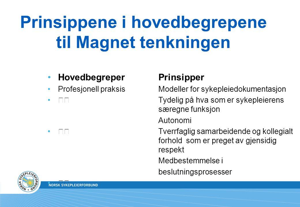 Prinsippene i hovedbegrepene til Magnet tenkningen HovedbegreperPrinsipper Profesjonell praksis Modeller for sykepleiedokumentasjon Tydelig på hva som
