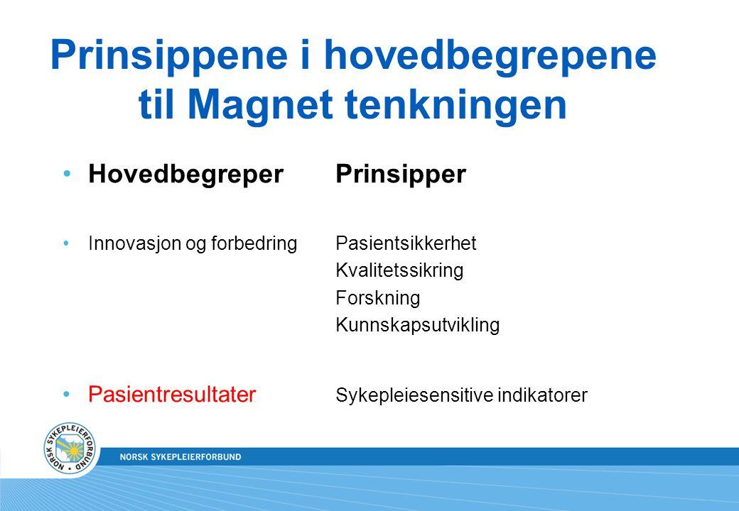 Prinsippene i hovedbegrepene til Magnet tenkningen Hovedbegreper Prinsipper Innovasjon og forbedringPasientsikkerhet Kvalitetssikring Forskning Kunnsk