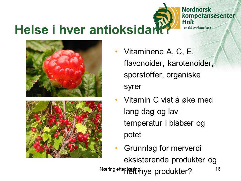 Næring etter læring!16 Helse i hver antioksidant.