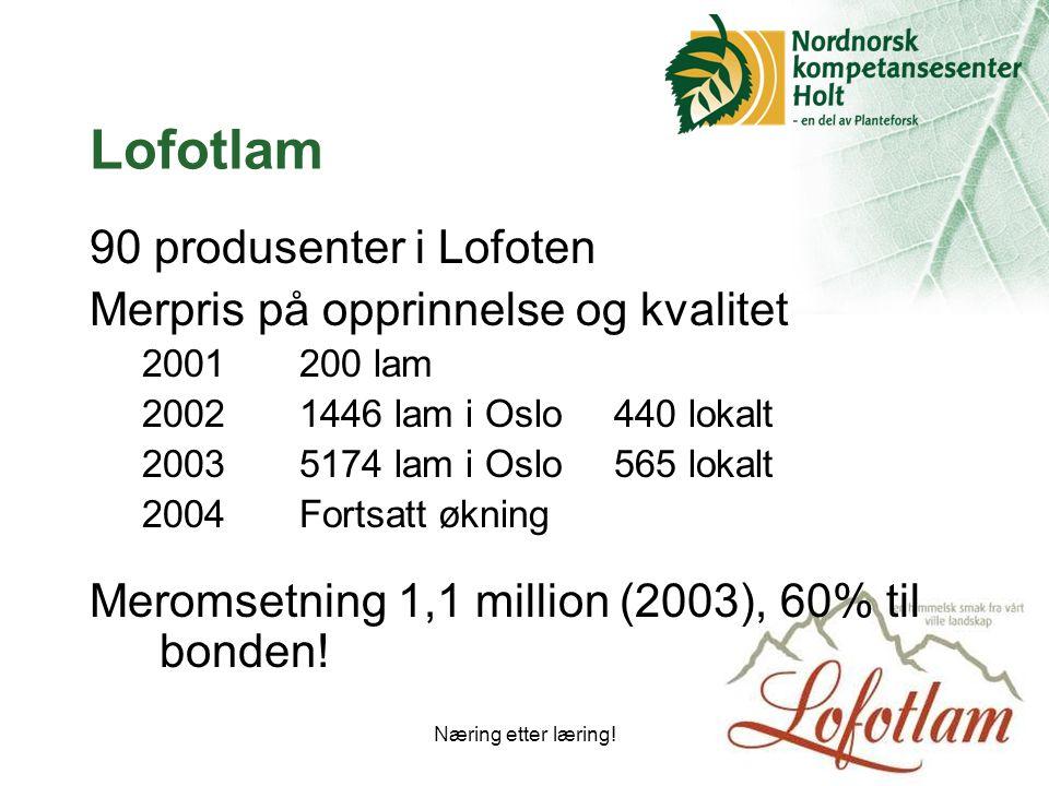 Næring etter læring!24 Lofotlam 90 produsenter i Lofoten Merpris på opprinnelse og kvalitet 2001200 lam 20021446 lam i Oslo440 lokalt 20035174 lam i Oslo565 lokalt 2004Fortsatt økning Meromsetning 1,1 million (2003), 60% til bonden!