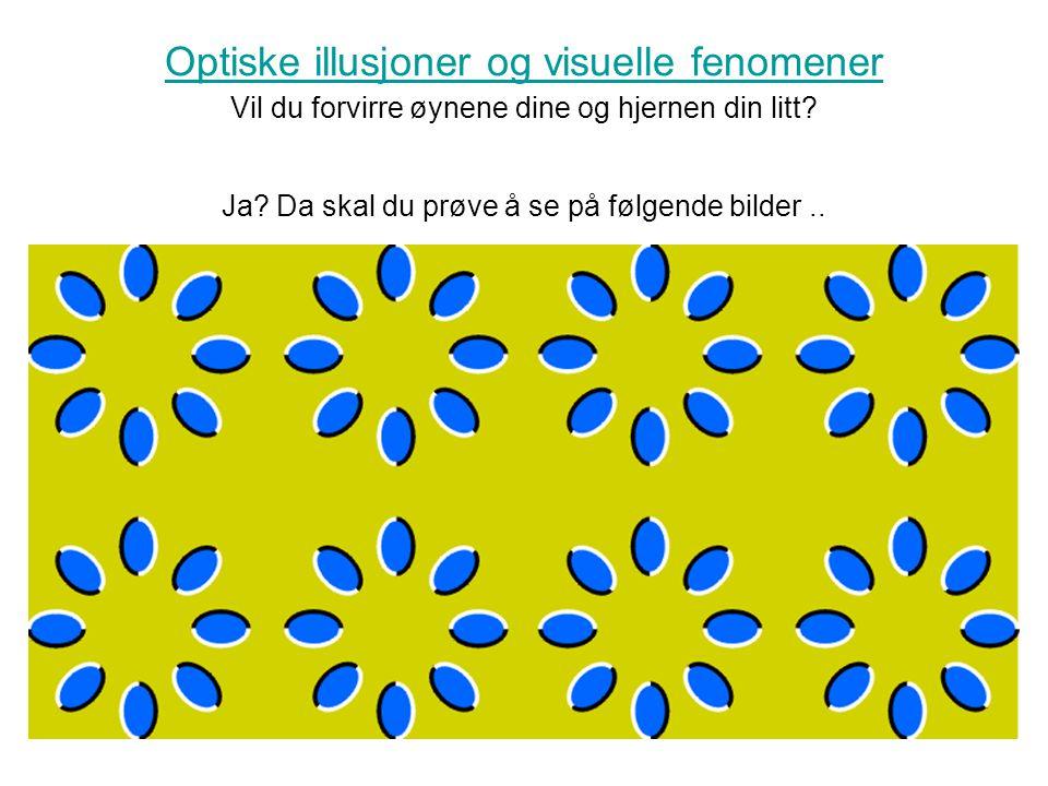 Optiske illusjoner og visuelle fenomener Optiske illusjoner og visuelle fenomener Vil du forvirre øynene dine og hjernen din litt.