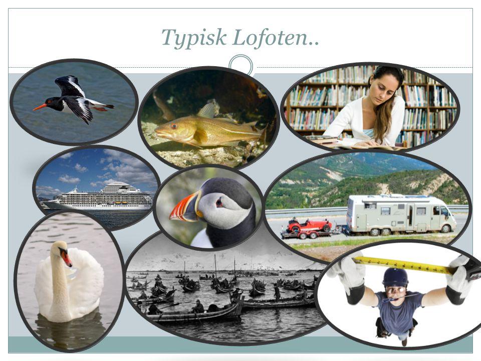 Typisk Lofoten..