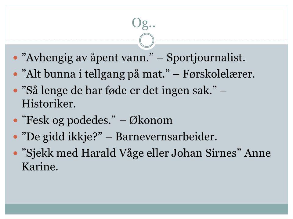Konklusjon fra svanetesten For å bo i Lofoten: - Må du være litt sprø.
