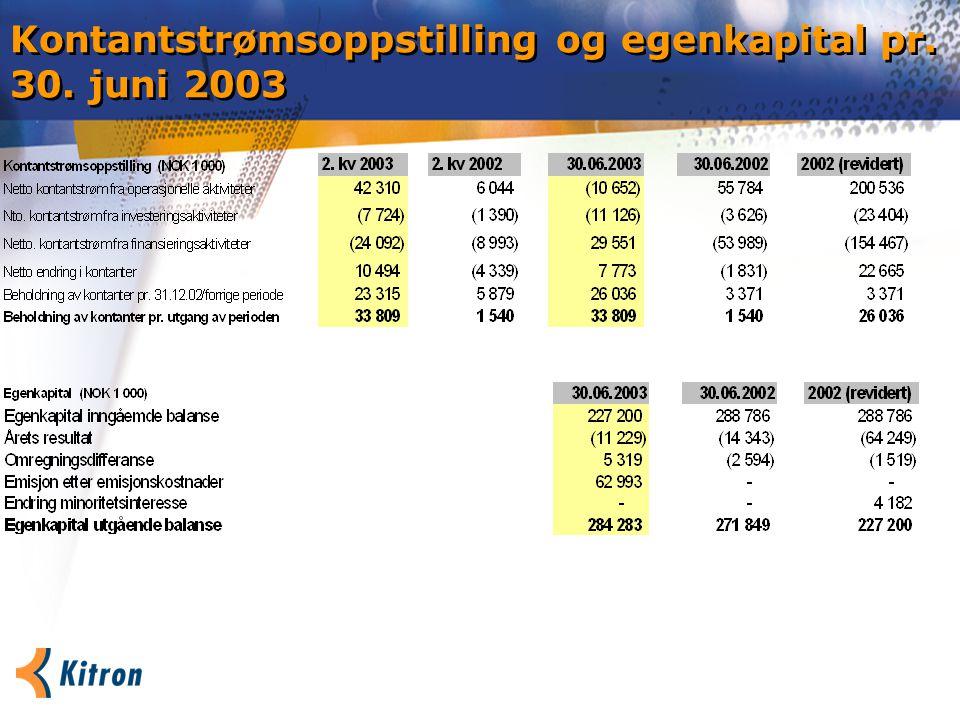 Kontantstrømsoppstilling og egenkapital pr. 30. juni 2003
