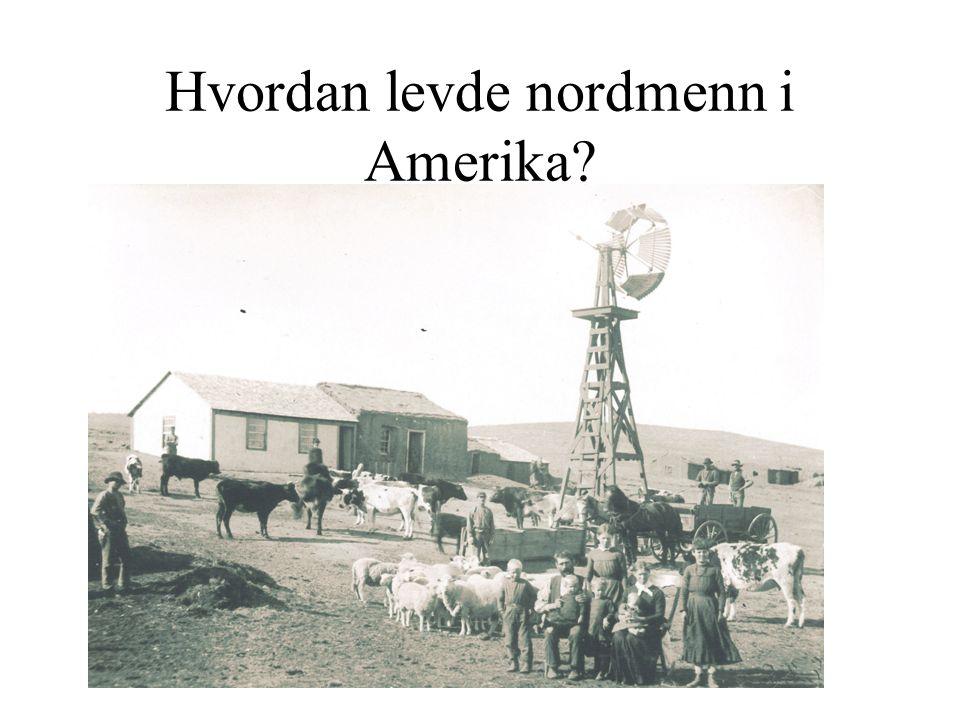 Hvordan levde nordmenn i Amerika?