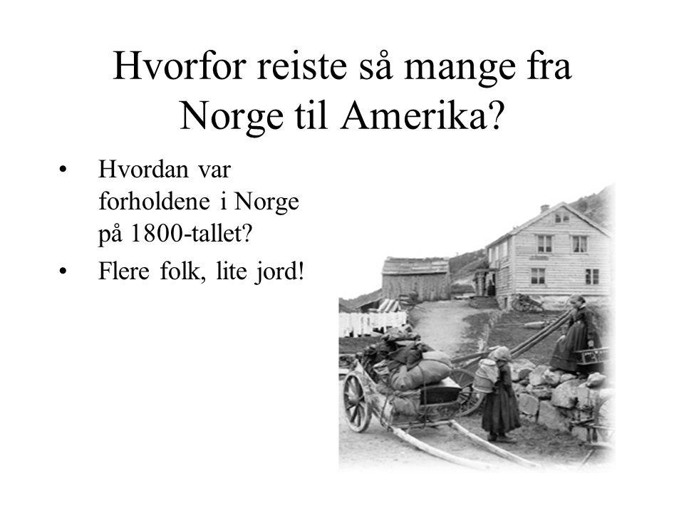 Hvorfor reiste så mange fra Norge til Amerika.Hvordan var forholdene i Norge på 1800-tallet.